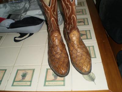 Unworn Anteater Boots